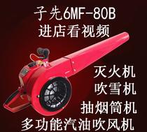 气体自动柜式灭火装置2kg4kg6kg8kg10悬挂式七氟丙烷灭火器手提式