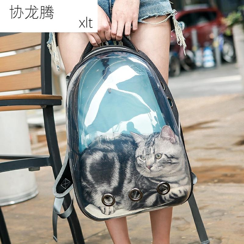 宠物猫携书包背包猫包透明箱袋猫双肩狗狗便笼子舱猫咪太空包外出
