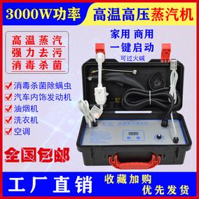 狄阳多功能清洗机高温蒸汽一体机