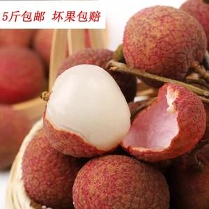 广东荔枝水果高州白糖罂新鲜水果包邮当季荔枝妃子笑桂味糯米糍