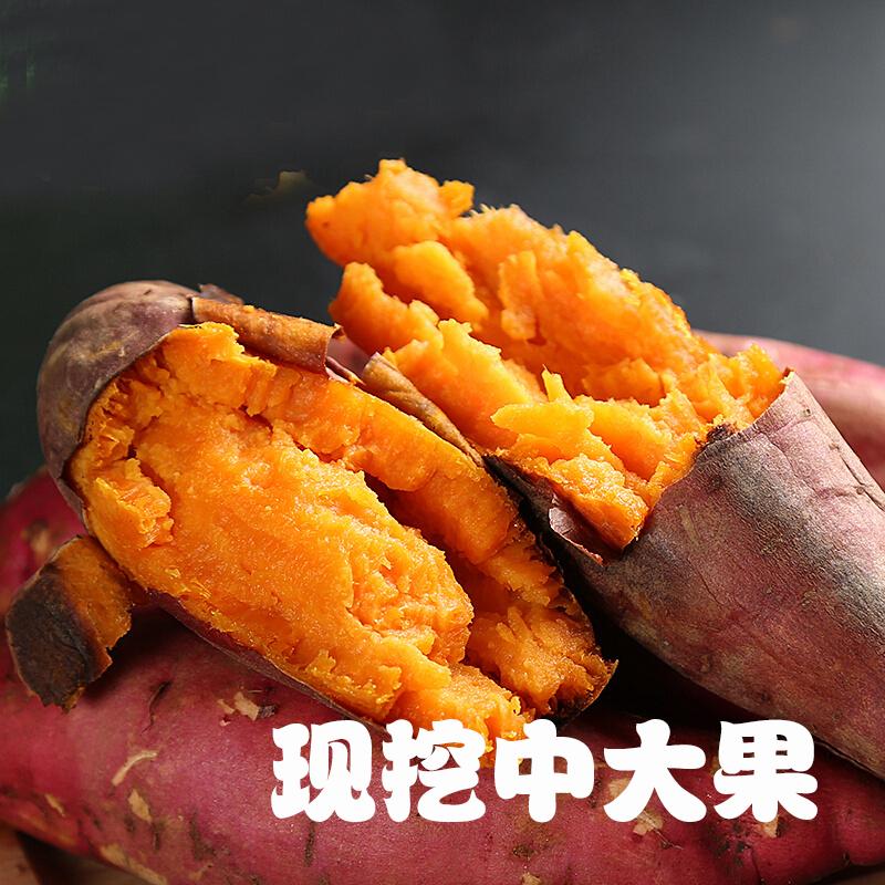 10-16新券【中大果】龙薯九红薯5斤装现挖红薯