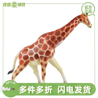 RECUR重现 儿童玩具软胶仿真野生小动物长颈鹿狮子王狼老虎模型