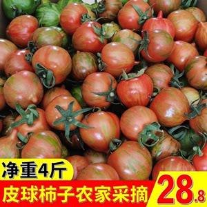 东北皮球柿子新鲜水果虎铁皮番茄圣女果花皮小迷彩草莓西红柿4斤