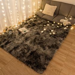 地毯卧室少女ins风 家用客厅毛毯地垫可睡可坐 床边温馨可爱满铺