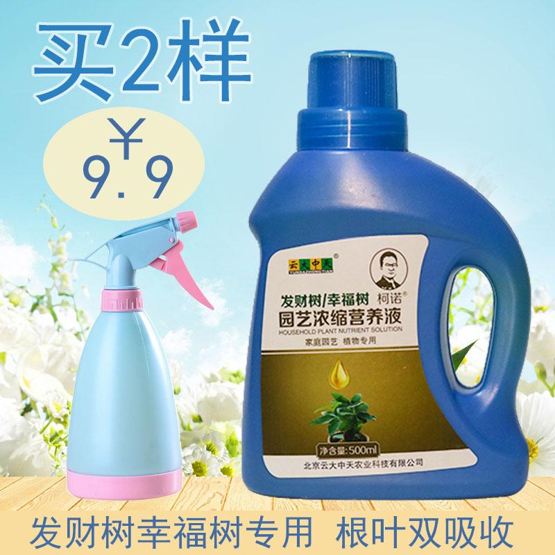 X植物营养液发财树专用型营养液幸福树营养液花卉肥料土水培通用