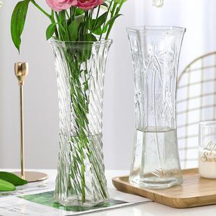 两件套 特大号玻璃花瓶透明水养富贵竹花瓶客厅家用插花瓶摆件