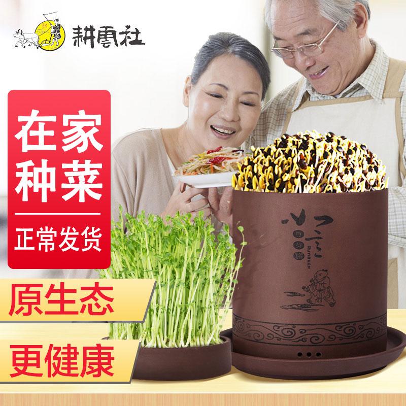 Аппараты для проращивания бобовых Артикул 587481345608
