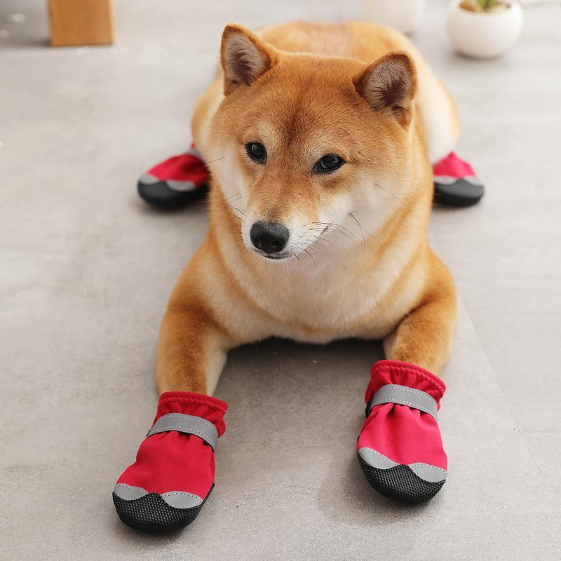 狗狗鞋子夏季不掉金毛鞋套泰迪外出防滑狗脚套防水宠物鞋一套4只