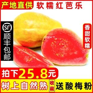 顺丰包邮漳州红心芭乐果土软心番石榴软糯鸡屎果 新鲜水果5斤当季