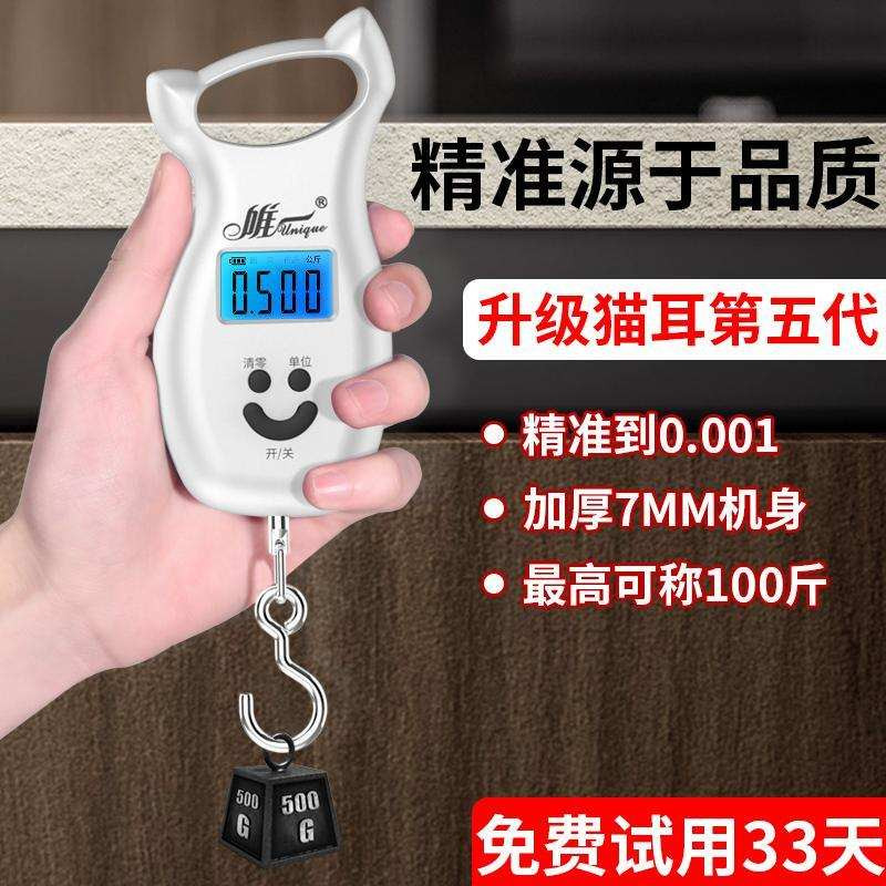 Portable electronic scale portable high precision kg Mini luggage hook spring scale portable scale household scale