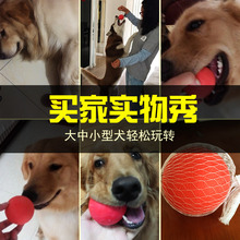 Dogs, molars, toy horses, dogs, training, bite, solid ball, elastic ball, golden pet, Teddy rubber ball, large pets.