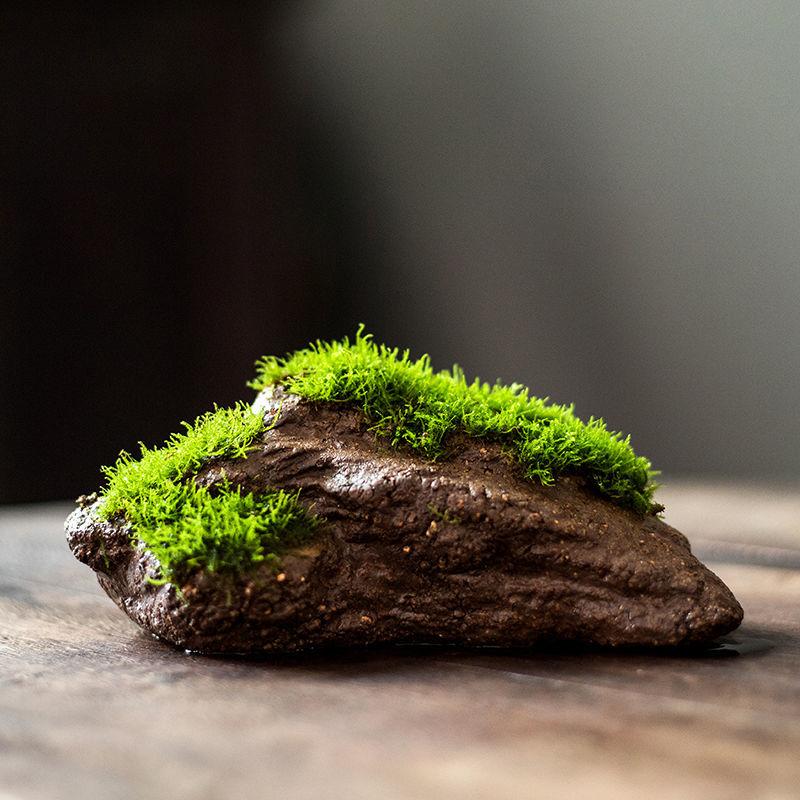 人工活石鱼缸造景莫斯假山水草盆景苔藓盆景微景观摆件人造吸水瓷