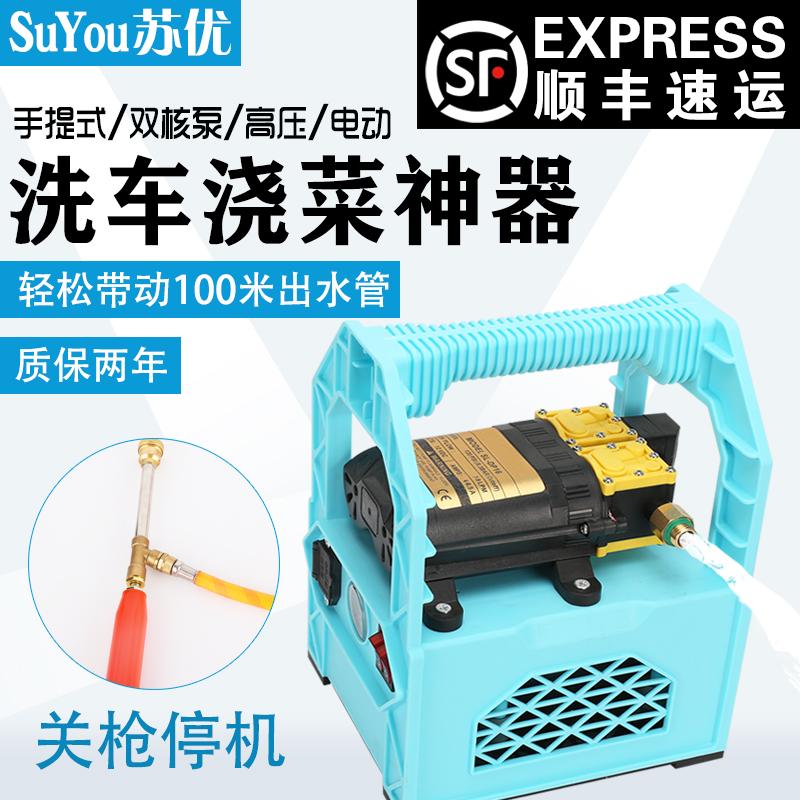 喷雾器电动农用手提便携式充电家用户外浇菜打药洗车抽水12v水泵