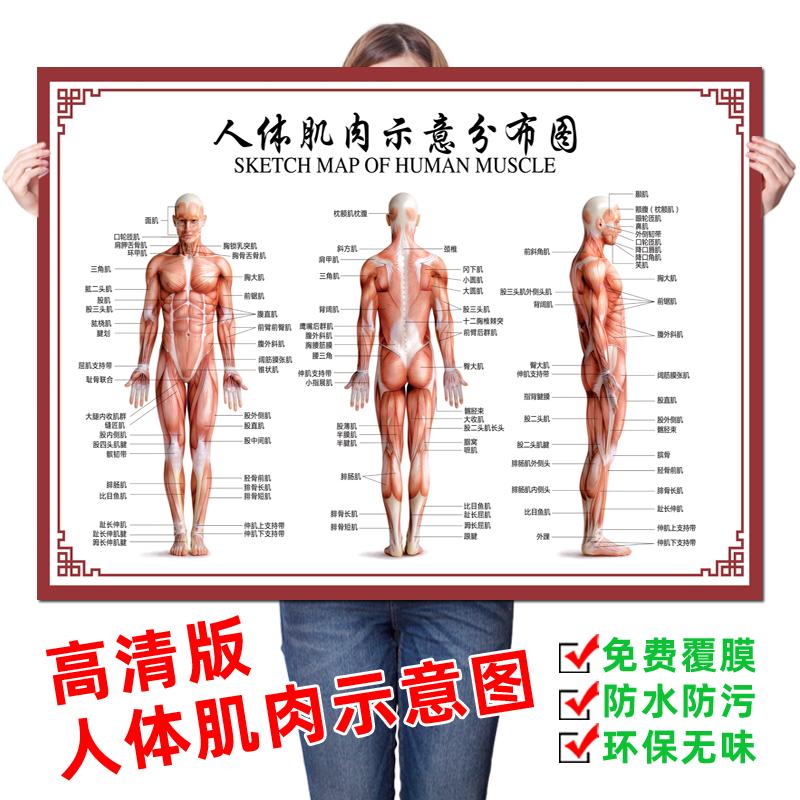 Плакаты / Постеры Артикул 638729183563