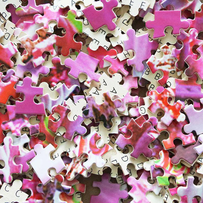 。梦立方高难度2000片木拼图成人益智玩具儿童趣味礼物动漫风景