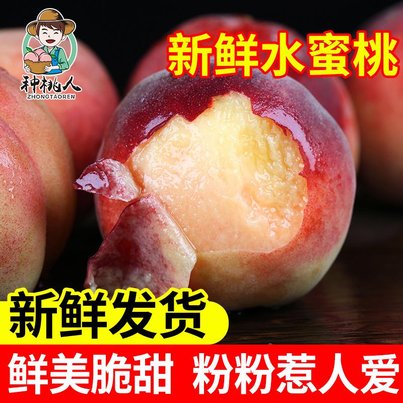 山东水蜜桃5斤新鲜脆甜大整箱毛桃
