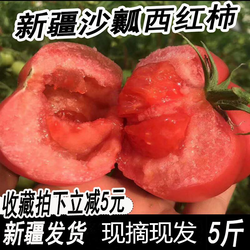 新疆新鲜西红柿 水果大番茄5斤包邮应季 现摘农家蔬菜沙瓤自然熟