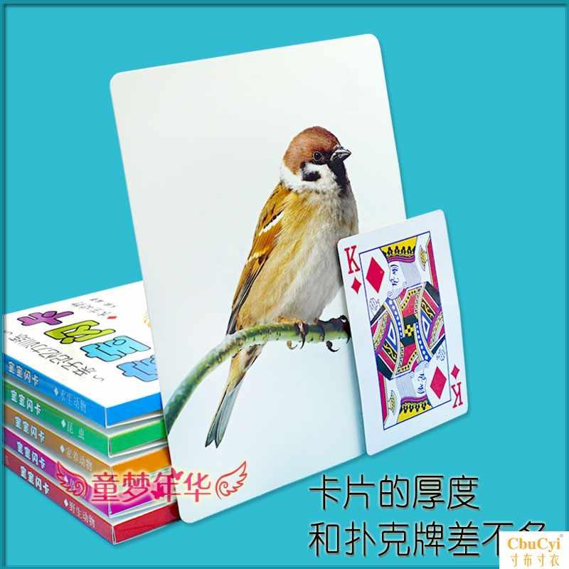 Карточки для раннего обучения Артикул 593883076975