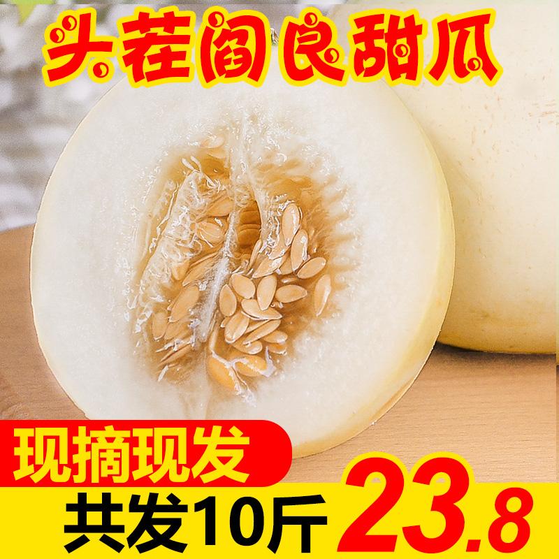阎良甜瓜10斤新鲜白皮郁金香白蜜瓜当季应季水果香瓜孕妇陕西现货