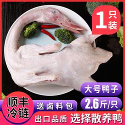 鲜鸭肉整鸭新鲜鸭白条鸭冷冻樱桃谷瘦肉鸭红烧卤鸭生鲜鸭子肉整只