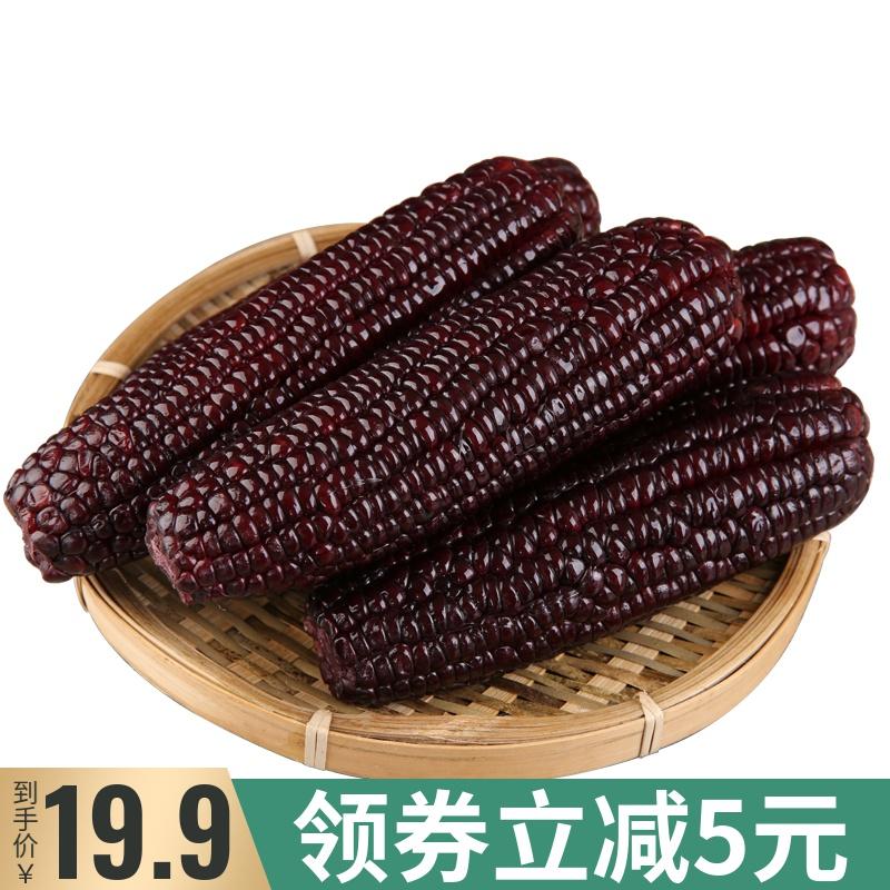 维珍甜糯新鲜黑玉米现摘现发苞米