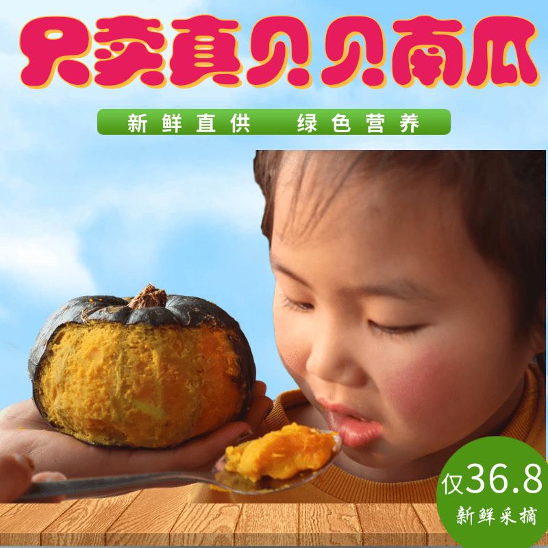 板栗味绿贝贝小南瓜5斤新鲜吃货湖北助农宝宝辅食品日本迷你蔬菜