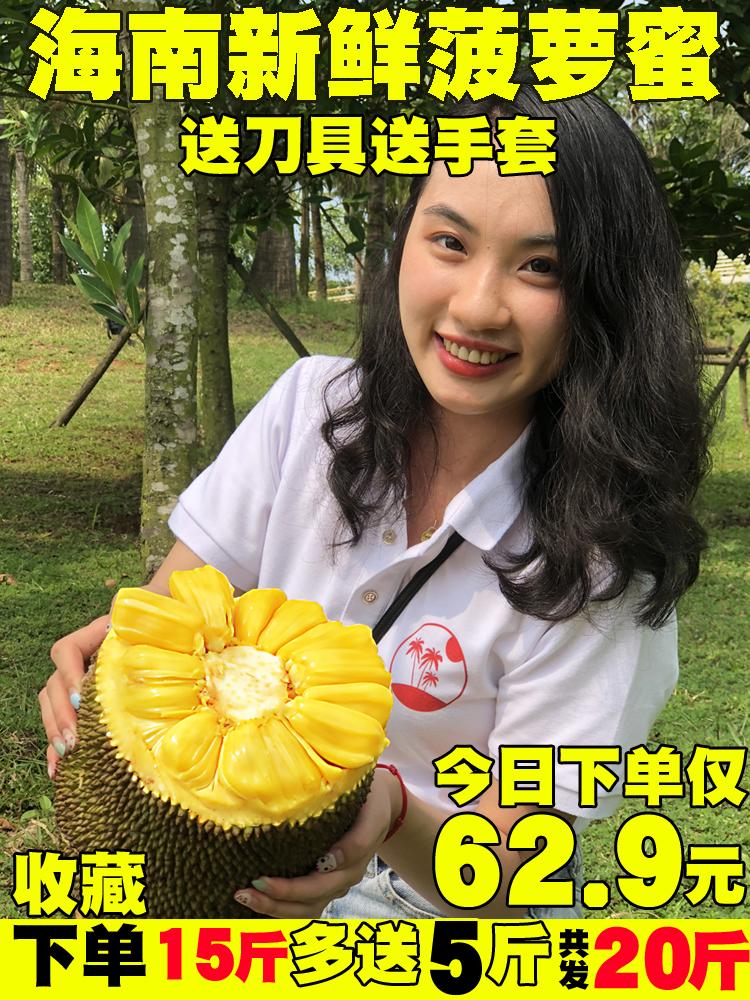 热销35件买三送一海南新鲜一整个黄肉三亚红心木菠萝