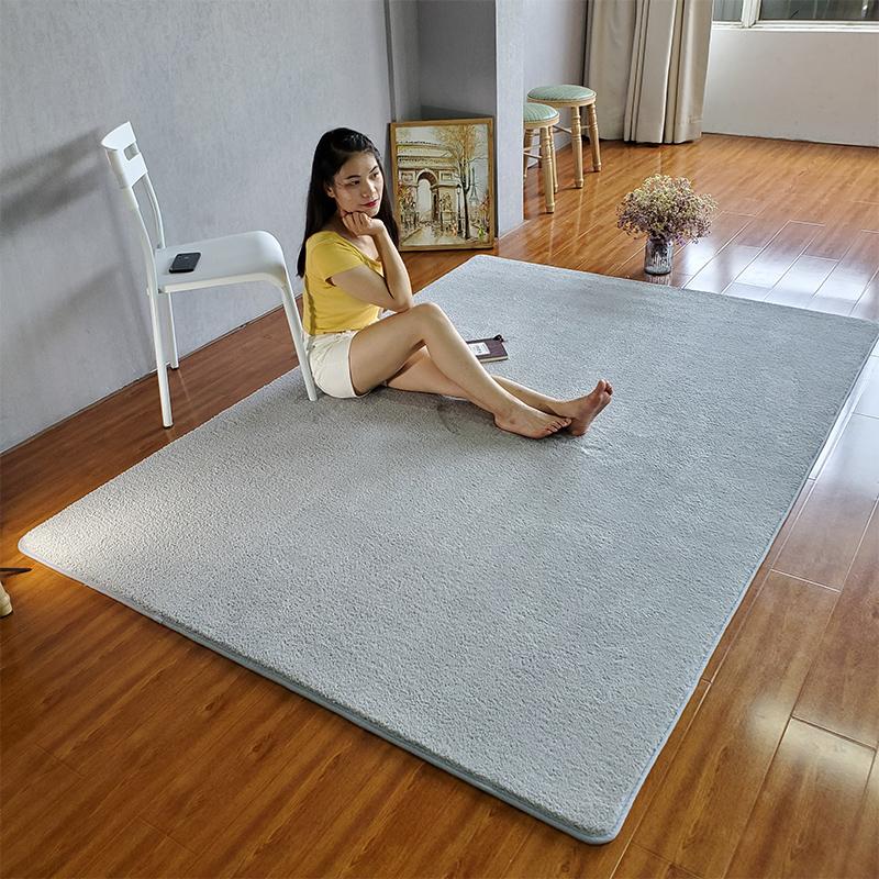 北欧加密超柔地毯客厅茶几毯卧室床边满铺网红房间灰色地垫可水洗,可领取5元天猫优惠券