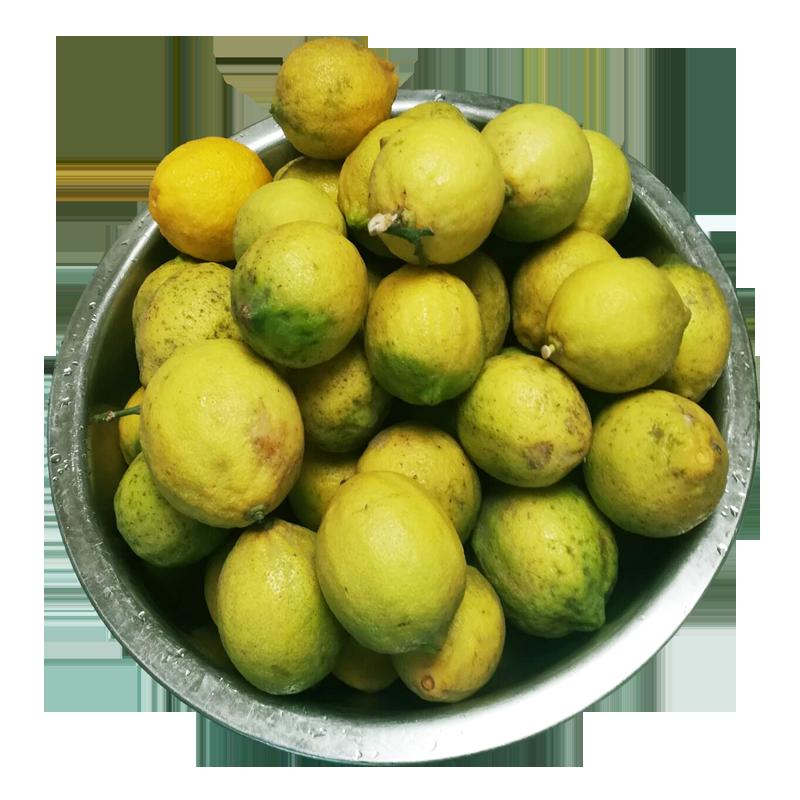 安岳柠檬黄柠檬可切片5斤泡水带箱28.56元包邮