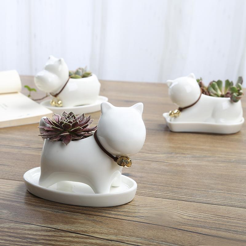 卡通可爱多肉花盆小号植物白色陶瓷创意个性简约特价清仓包邮拇指