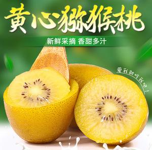 四川蒲江黄心猕猴桃新鲜包邮水果包邮当季奇异果狝猴桃整箱应季