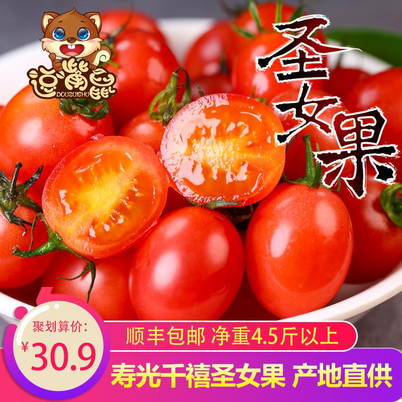 【逗嘴鼠_千禧圣女果】新鲜西红柿果番茄小西红柿水果樱桃5斤装