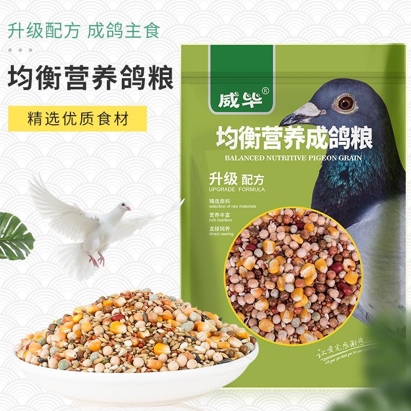 通用鸽子饲料食物饲料赛鸽鸽粮豌豆玉米通用饲料鸽子通-鸽饲料(羽歌旗舰店仅售25.06元)