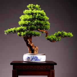 客厅迎客松植物盆景装饰室内桌面仿真绿植盆栽假花酒店摆设艺术品图片