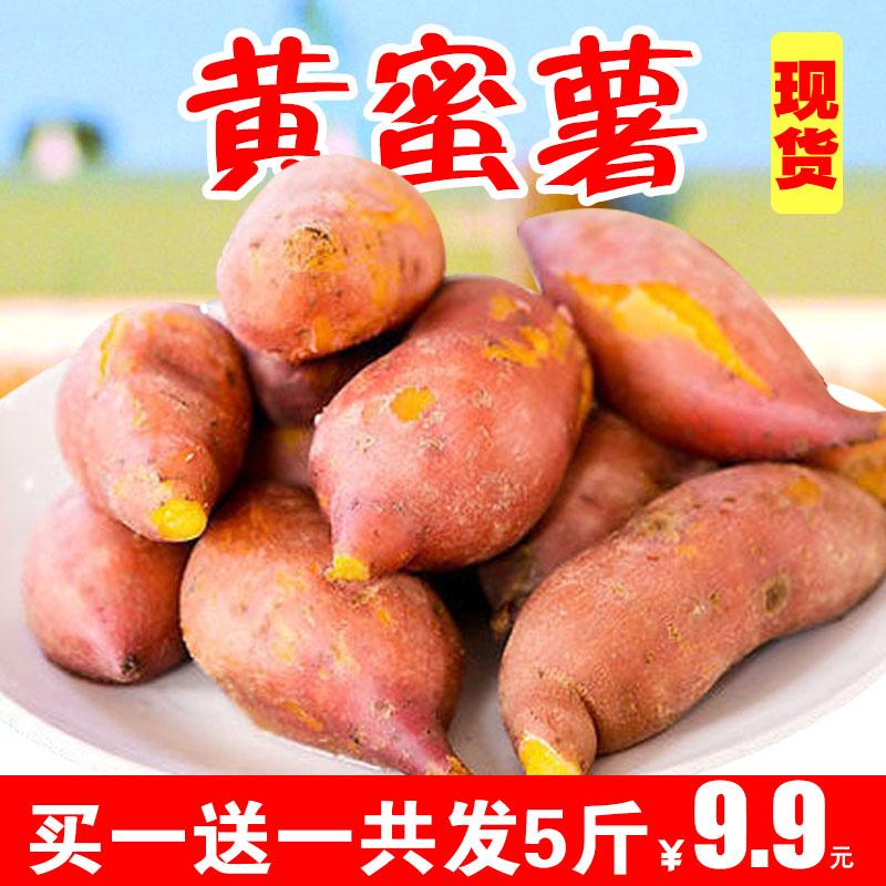 券后9.90元新鲜红薯黄蜜薯农家自种非天目山香薯红心地瓜番薯山芋板栗薯5斤