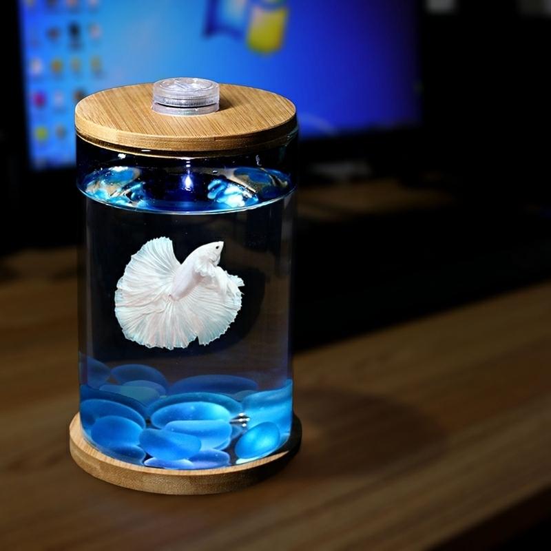 斗鱼缸迷你小型玻璃鱼缸桌面微景观赏办公室水族箱生态瓶鱼缸包邮,可领取1元天猫优惠券
