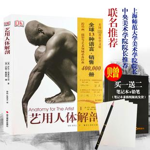 艺用人体解剖 名家推荐英国DK授权 人体结构绘画教学造型模型素材图集美术艺考教程完全指南实用教材书理解人体形态结构运动学解刨