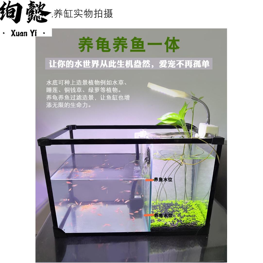 防护加强 养小鱼的小鱼缸 混养缸 乌龟缸 龟鱼两用玻璃缸 厚玻璃