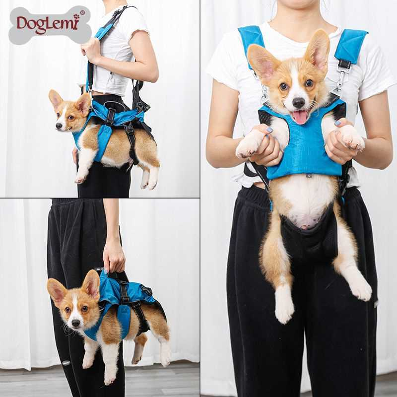 Multifunctional pet backpack small dog medium dog Teddy portable chest strap go out pet shoulder bag 3 in 1