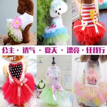 Щенок одежда весна и летнее платье плюшевый мишка маленькая собака питомца летом тонкий раздел милая принцесса юбка