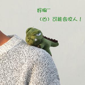日系卡通可爱毛绒小恐龙胸针ins潮情侣熊猫别针徽章圣诞包包挂件