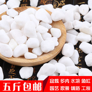 【五斤】小白石子鹅卵石原石天然多肉铺面石园艺造景花盆白色石头