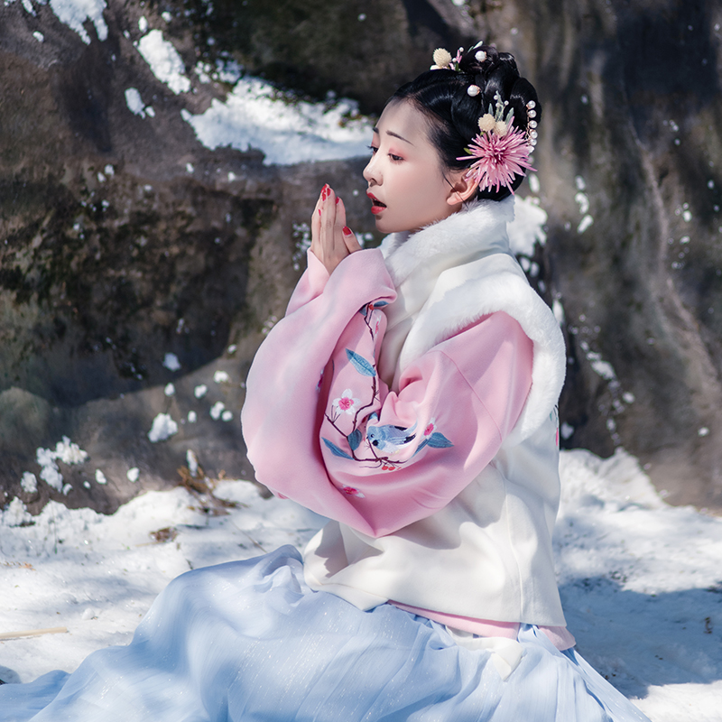 [Xi Shang Meisuo] Hanfu female Ming-made jacket skirt thickening autumn and winter traditional Chinese clothing
