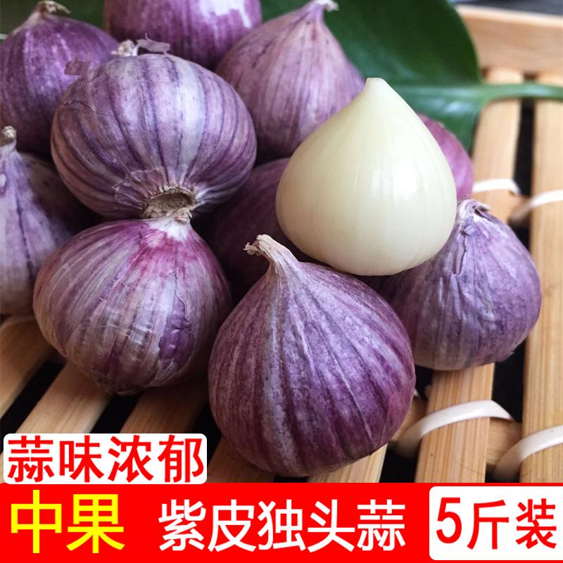 云南紫皮珍珠小5斤新鲜独头蒜