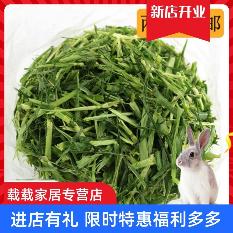 大麦草草段兔粮兔子荷兰猪龙猫粮食饲料干草牧草兔草草料食物200g