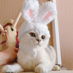 猫咪兔子头套狗狗宠物网红帽子泰迪法斗小型犬草帽头饰装扮可爱帽