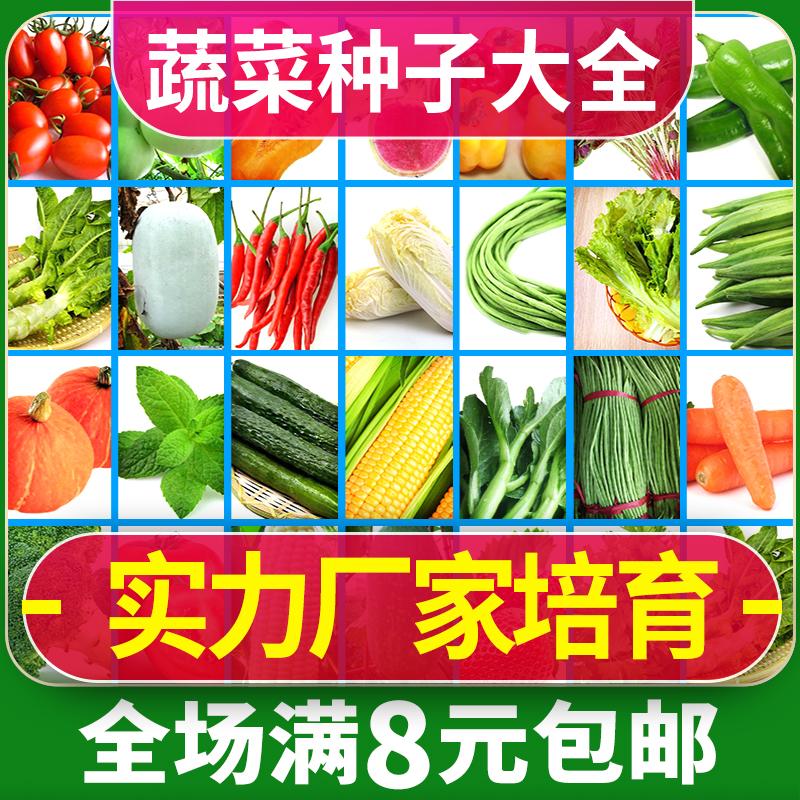 蔬菜种子孑春季阳台四季上海香青菠韭菜各种菜籽农家大全套装