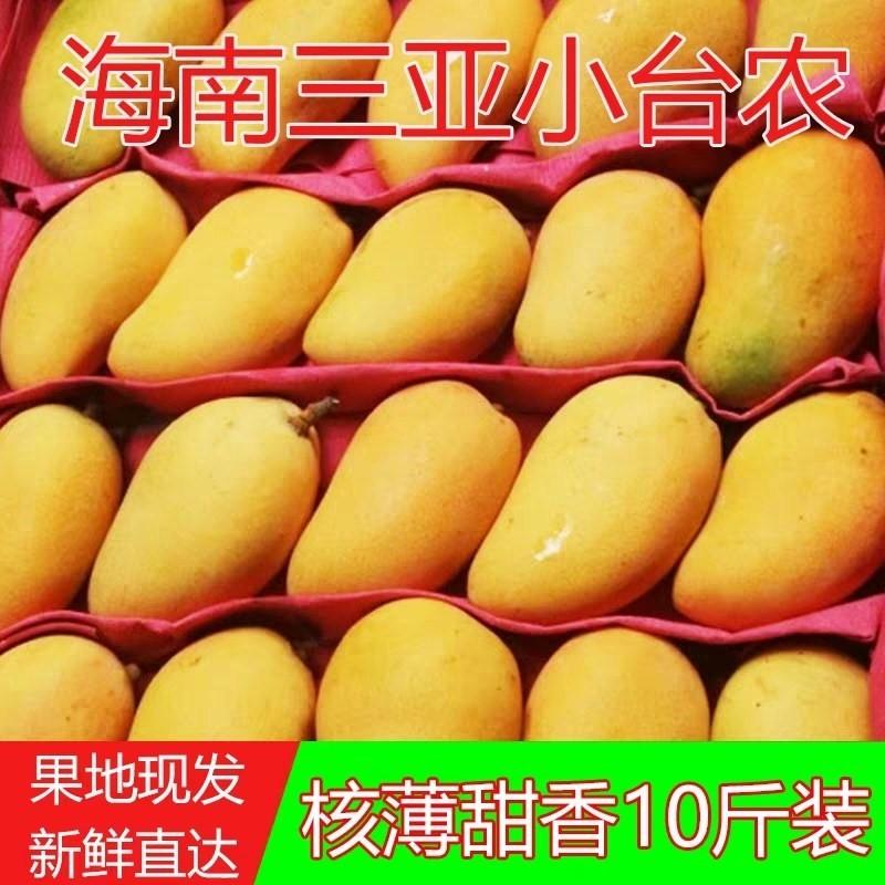 海南忙三亚新鲜水果小台农芒果鸡蛋芒含箱10斤甜心芒果香芒果超甜