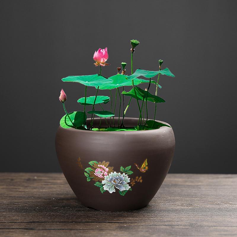 紫砂大号荷花缸莲花陶瓷水培缸花盆