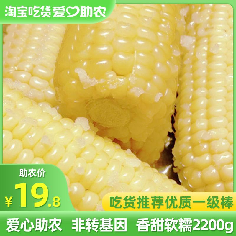 百隆达 糯玉米东北非转基因甜玉米棒真空装新鲜即食黏粘白玉米8支